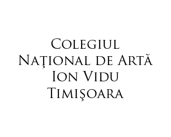 "Colegiul National de Arta ""Ion Vidu"""